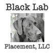 Black Lab Placements jobs in Holy Hill, SOUTH CAROLINA now hiring Local CDL Drivers