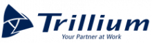 Trillium Drivers Solutions Truck Driving Jobs in Denver, CO